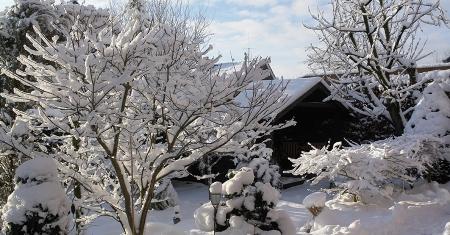 So schön kann der Winter in Münster sein.